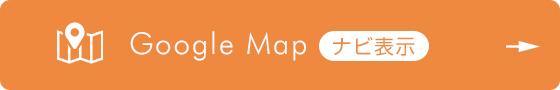 Google Mapナビを表示